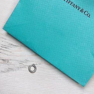 Tiffany & Co | Charm Clasp